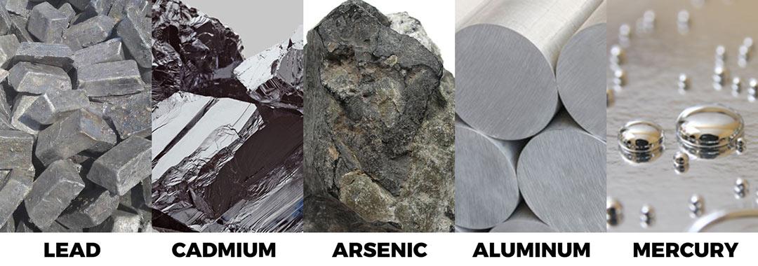 Hemp Phytoremediation of Minerals